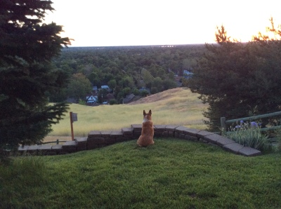"Jake overlooking his ""Kingdom"""