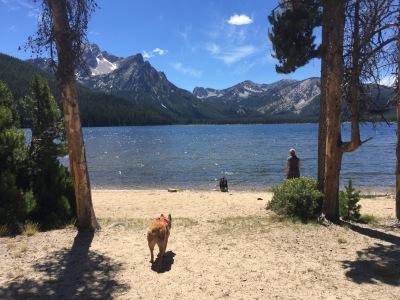 Stanley Lake, 2016