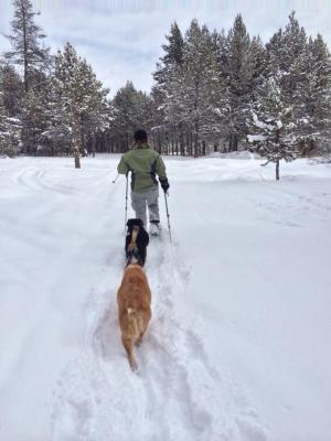 Snowshoeing in McCall, 2014
