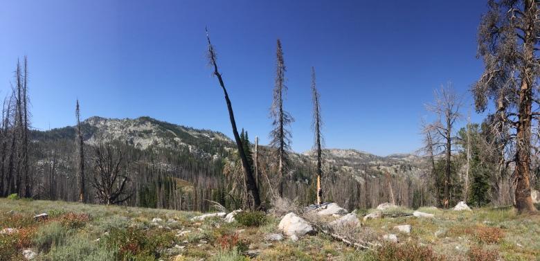 Trinity Lake hike 11