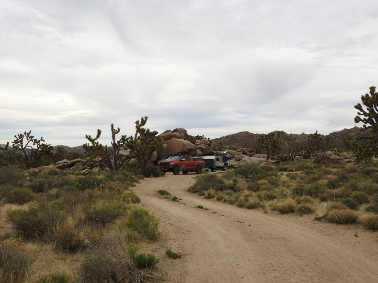 Mojave Cross campsite 5